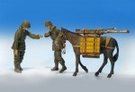 1-35-U-S-Infantrymen-with-mule-U-S-pesaci-s-mulou