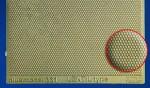 1-35-Engraved-plate-Lentil-type