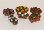 1-35-Flowers-in-boxes
