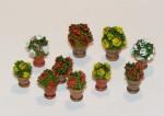 1-35-Flowers-in-flowerpots