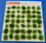 1-35-Tufts-of-grass-green-Trsy-travy-zelene