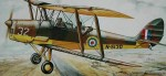 1-48-D-H-82-TIGERMOTH