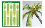 Palm-Leaf-2
