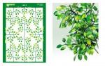 Typical-Leaf-6