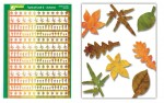 Typical-Leaf-2-Autumn