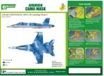 1-48-F-A-18-Camouflage-Scheme-2