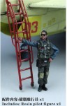 1-48-PLAAF-Fighter-Pilot-I-resin-figure-x1