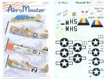 1-48-P-47D-Thunderbolts-Pt-1-3