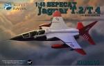 1-48-Sepecat-Jaguar-T-2-T-4