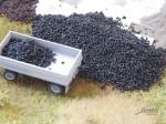 1-160-Black-coal-25-g