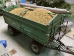 1-35-Bag-of-cereal-Pytel-obilovin-100gr