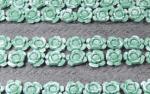 1-35-Green-cabbage-plants-36-pcs-