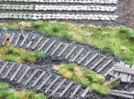 1-87-Railway-thresholds-old-wood-10g