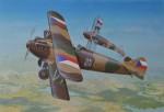 1-72-Letov-S-20-1-serie