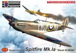 1-72-Spitfire-Mk-Ia-Black-and-White