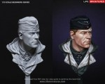 1-10-WW2-German-Panzer-Commander