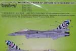 1-48-Polish-F-16-C-D-NATO-Tiger-Meet-2013