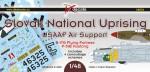 1-48-SNP-spojenecka-letecka-podpora