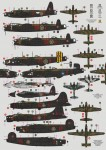 1-48-No-100-GROUP-RAF