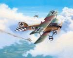 1-48-Albatros-DIII
