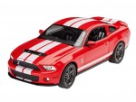1-25-2010-Ford-Shelby-GT-500