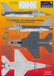 1-48-F-16A-B-C-D-Reinforcement-plates-2-sets-in-vinyl-