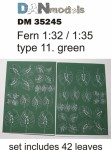 1-35-Fern-green-type-11