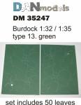 1-35-Burdock-leaves-green-type-13