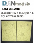 1-35-Burdock-leaves-yellow-dry-leaves-autumn-type14