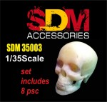 1-35-Accessories-for-diorama-Human-skull