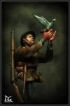 1-9-War-Pigeon-British-army-Great-war-series-Duke-of-Wellingtons-Regiment