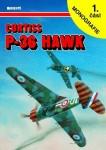 P-36-Hawk-1-dil-Text-in-czech-