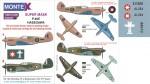 1-32-P-40E-HASEGAWA