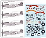 1-48-Tuskegee-Red-Tailed-Mustangs-Part-2