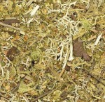 Ground-Detail-Mossy-Forest-posyp
