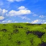 Wild-Grass-and-Hills-Type-4