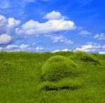 Plain-Grass-and-Hills