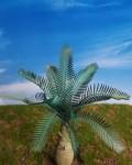 1-35-Jungle-Palm