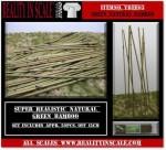 Green-Natural-Bamboo
