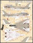 1-48-Grumman-F-14A-Stencil-and-Data-set