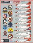 1-48-Colorful-Cougar-Trainers-features-markings-for-11-F9F-8T-TF-9J-aircraft