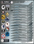1-48-Color-and-Markings-of-US-Navy-Grumman-F-14-Tomcats