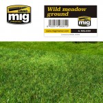 WILD-MEADOW-GROUND