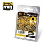BIRCH-DRY-LEAVES