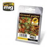 GROUND-PALMS