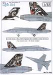 1-32-McDonnell-Douglas-F-A-18C-Hornet-J-5011-Tigermeet-2011-Swiss-Air-Force