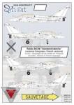 1-72-Dassault-Rafale-B-C-M-Standard-stencils-French-versions