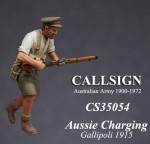 1-35-ANZAC-Charging-Gallipoli-1915