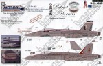 1-32-F-A-18C-Patriot-Hornets
