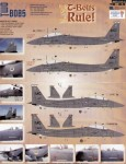 1-48-F-15E-T-Bolts-Rule-Mountain-Home-Air-Force-Base-2